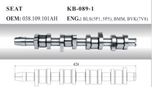 Auto Camshaft for Seat and Skoda (028.109.101ah) pictures & photos