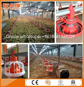 Free Design Poultry Control Shed Equipment From Factory with Shed Construction pictures & photos