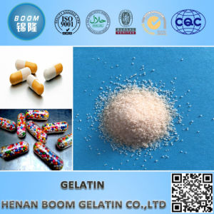 Gelatine Powder for Food Industry pictures & photos