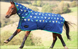 600d Polyester Horse Rug Horse Riding Products pictures & photos