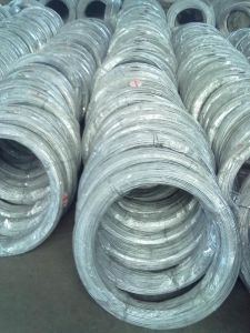 Q195 Galvanized Iron Wire (BWG18) pictures & photos