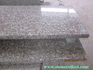 China Granite G664 Steps and Stair pictures & photos