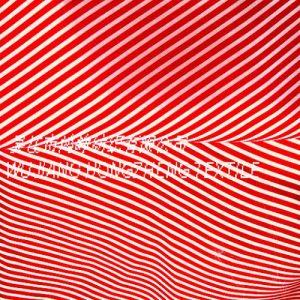 Polyester Taffeta Fabric by Printed