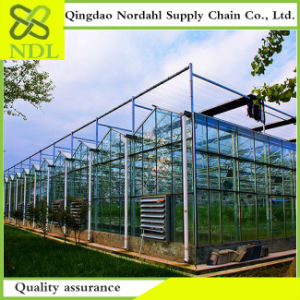 The Multi-Span Agriculture Glass Greenhouse pictures & photos