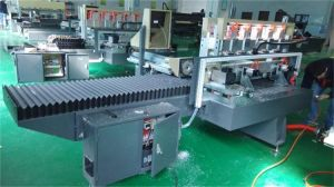 Acrylic Orthogonal Two Size Polishing Machine Manufacturer Dircetly Provide pictures & photos