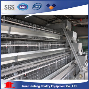 Broiler Chicken Breeding Cage with Automatic Poultry Farm Equipment pictures & photos