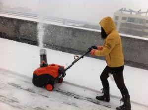 Portable Snow Blower (KC318) pictures & photos