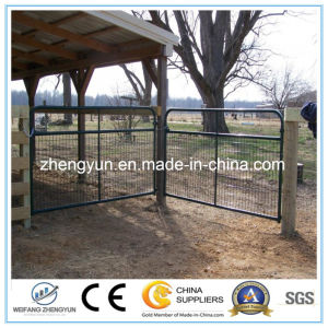 Welded Wire Mesh Fence for Field Fence pictures & photos