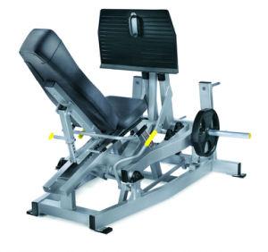 Commercial Exclusive Use Gym Equipment Tz-5043 Leg Press pictures & photos