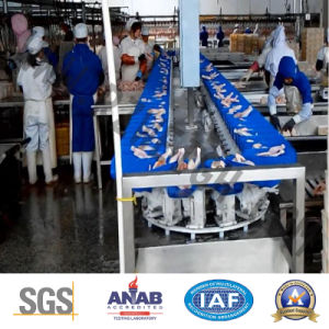 Seafood Chicken Abalone IP65 SUS 304 Sorting Machine pictures & photos
