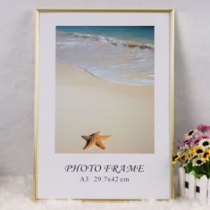 Aluminum Advertisement Frame/Picture Frame/Photo Frame/Metal Frame (ALC) pictures & photos