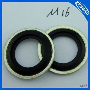 Self-Centering NBR Gasket pictures & photos