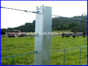1.86kg/M Black Painted and Galvanized Steel Star Picket pictures & photos