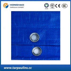 5 Mx10m Blue Reinforced Waterproof PE Tarpaulin for Pool pictures & photos