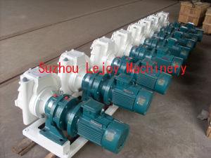 Paste Feeding Pump (SJB66-T) pictures & photos