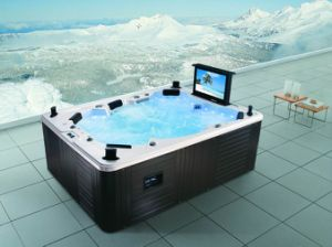 USA Balboa Control Panel Lucite Acrylic Fiberglass Swim SPA Jacuzzi with TV (M-3342) pictures & photos