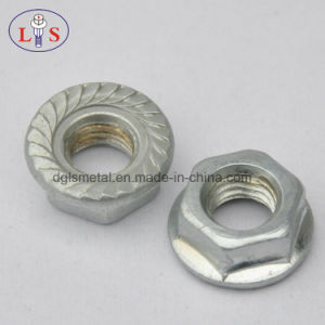 Flange Nut (White zinc plated) with High Quality pictures & photos