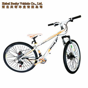 Aluminum Alloy Frame Colorful Mountain Bike (MTB-004) pictures & photos