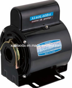 Electric Motor (48 frame 1/4HP-2HP) Procon Pump Motor