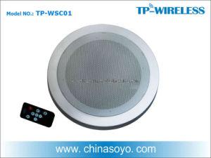 2.4G Digital Wireless Speaker (TP-WSC01) pictures & photos