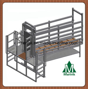 Livestock Yard Cattle Deluxe Ramp High Quality pictures & photos