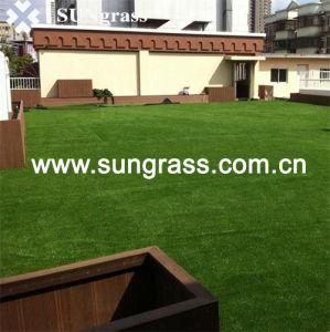 20mm Ladscape Garden Artificial Grass (SUNQ-HY00091) pictures & photos