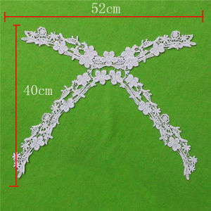 Netting Yoke Cotton Lace Collar (cn144) pictures & photos