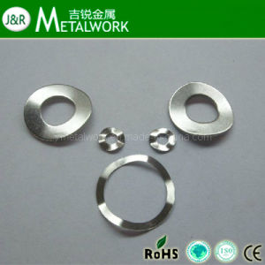 Stainless Steel Spring Wave Washer (DIN137) pictures & photos
