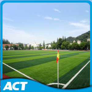 Soccer Artificial Turf for Football Grass W50 pictures & photos