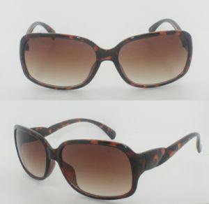 Sunglass Factory, Unisex Sunglasses 8084