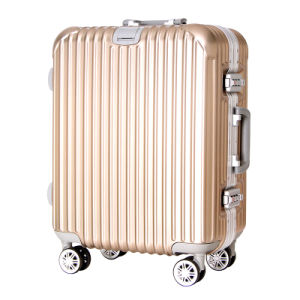 21 Inches Luxury Aluminium Magnesium Alloy Luggage