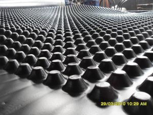 10mm High HDPE Dimple Geomembrane pictures & photos