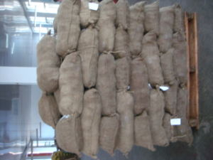 Professional Exporting New Season Fresh Chestnut 60-70 pictures & photos