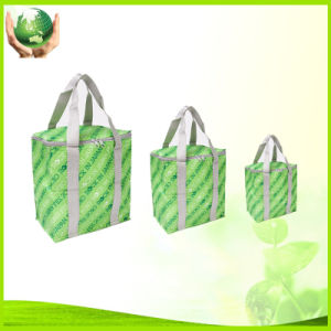 Promotional Cooler Bag, Made of Non Woven, Woven, Polyester