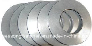 Stainless Steel Disc Washer / Belleville Washer (DIN2093) pictures & photos