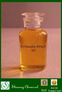 Herbicide Trifluralin 96%Tc 480g/L Ec