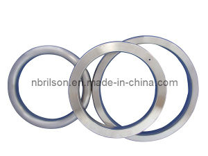 Style Bx Ring Joint Gasket pictures & photos