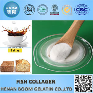 Good Quality Fish Collagen as Food Additives and Cosmetics pictures & photos