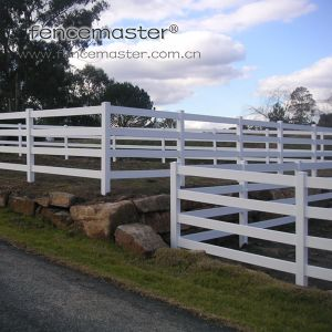 Horse Fencing Export to Australia Market pictures & photos