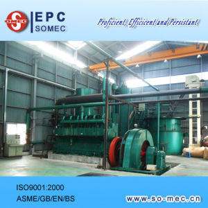 Biomass Gasification Power Plant pictures & photos