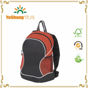 Hiking Backpack Professional Waterproof Rucksack Internal Frame Climbing Camping Bag pictures & photos