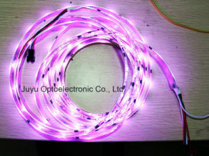 Waterproof RGB LED Light Strip for Holiday Decoration pictures & photos