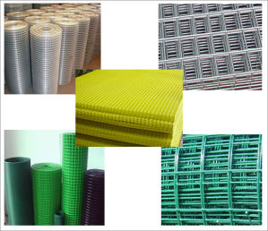 Ewwm-02 Welded Wire Mesh (Professional Manufacturer) pictures & photos