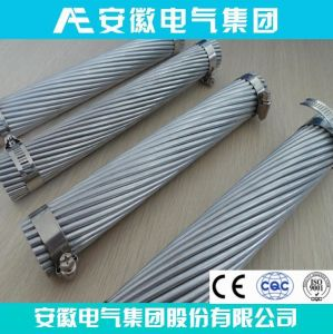 Bitterroot AAC All Aluminum Conductor ASTM B231 pictures & photos