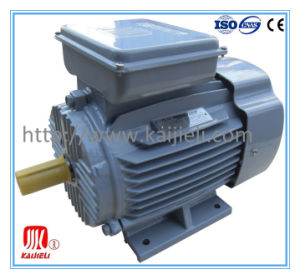 Single Phase Electric Motor, Single Phase Motor, Induction Motor pictures & photos