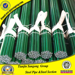 Plastic-Coated 21.2mm Od PE Coated Pipe pictures & photos