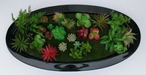 Artifical Pot Plants for Wall Hanging with Ellipse Pot