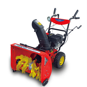 24 Inch Two Stage Gas Snow Blower (TY24DG651)
