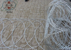 Flat Wrap Concertina Razor Barbed Wire Fence pictures & photos
