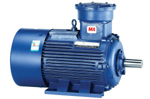 15kw/20HP Explosion-Proof Three Phase Induction Motor pictures & photos